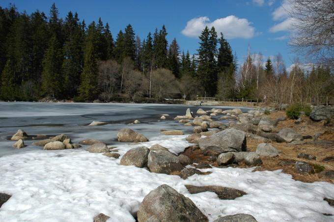 Plešné Lake in Šumava mountains
